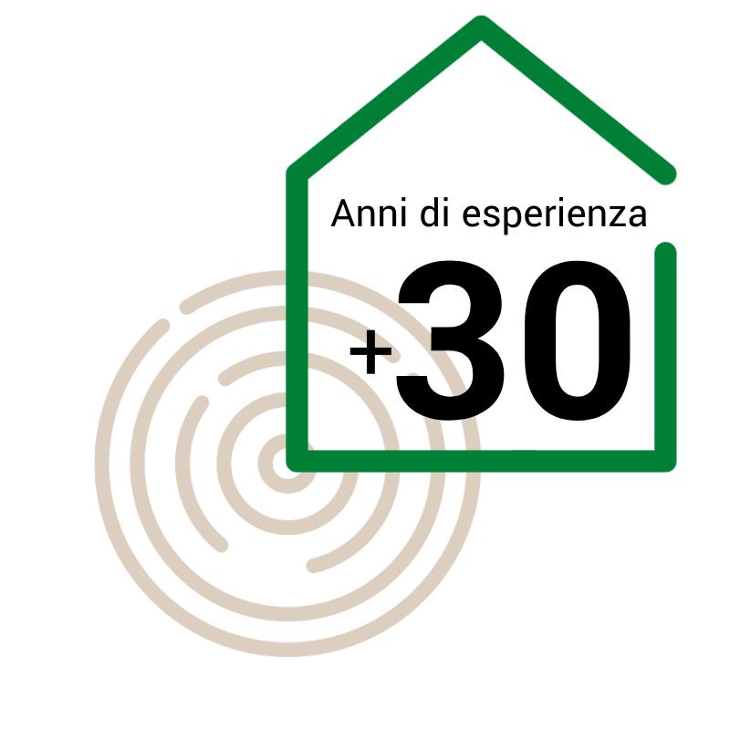 Wooden Houses_30 anni di esperienza
