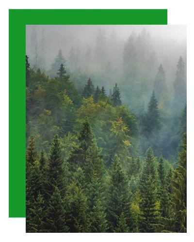 Wooden Houses_qualità dell'aria